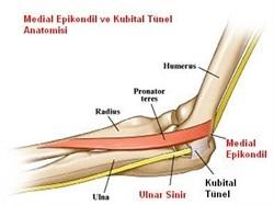 ortopedi ve travmatoloji i tahir mutlu duymus
